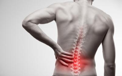 Le lumbago : les muscles au secours des ligaments